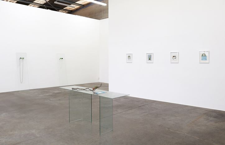 Exhibition view: Zina Swanson, For Vivian, Jonathan Smart Gallery (24 May–22 June 2019). Courtesy Jonathan Smart Gallery.