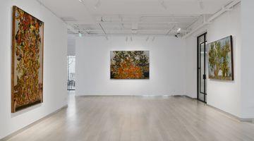 Contemporary art exhibition, Ugo Schildge, Synthesis at Galerie Dumonteil Contemporary, Shanghai, China