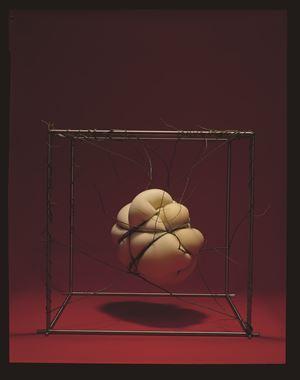 Binding Bounding by Ohtsubo Kosen contemporary artwork