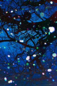 Trees and Snow IV by Tim Maguire contemporary artwork painting