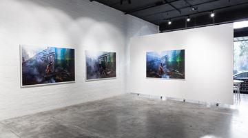 Contemporary art exhibition, Jill Orr, Detritus Springs at THIS IS NO FANTASY dianne tanzer + nicola stein, Melbourne