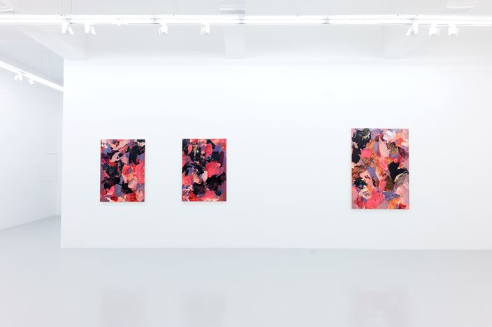 Exhibition view: André Hemer, Images Cast by the Sun,Yavuz Gallery, Singapore (22 November–22 December 2019).Courtesy the artist and Yavuz Gallery.