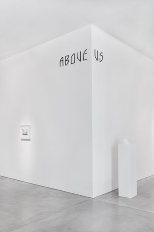 Exhibition view: Maria Loboda, Listen to me, little pig!, Galerie Thomas Schulte, Berlin (17 July–4 September 2021). Courtesy Galerie Thomas Schulte.Photo: Stefan Haehnel.