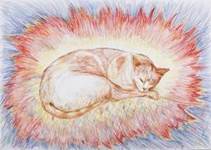 Nursery Cat by Anastasia Klose contemporary artwork
