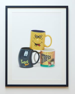 Mugshot by Judy Darragh contemporary artwork
