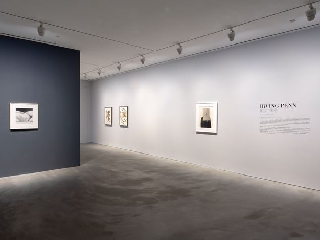 Exhibition view: Irving Penn, Pace Gallery, Hong Kong (25 January–7 March 2019). © The Irving Penn Foundation. Courtesy Pace Gallery.