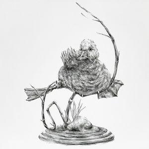 Bird Taxidermy #2 by JooLee Kang contemporary artwork
