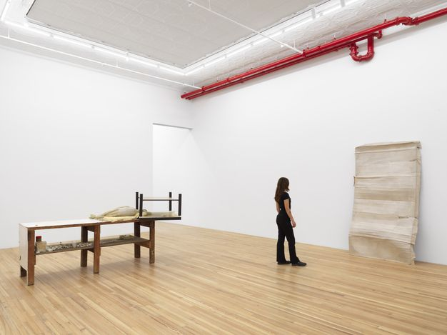 Exhibition view: Liz Magor, I Have Wasted My Life, Andrew Kreps Gallery, Cortlandt Alley, New York (21 May–2 July 2021). Courtesy the Artist and Andrew Kreps Gallery, New York. Photo: Dan Bradica.