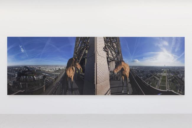 Yee-haw (paris) by Paola Pivi contemporary artwork