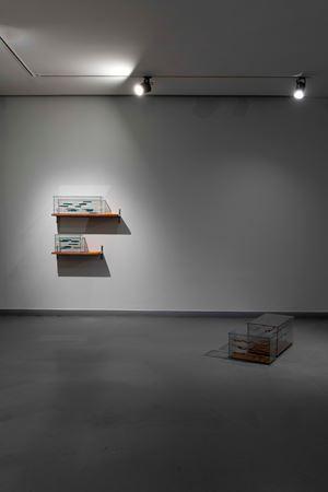 Kambriyenden Bu Yana Operatörler(II) - Fragman/Operators from the Cambrian Onwards(II) - Fragment by Gülşah Mursaloğlu contemporary artwork