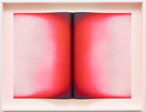 Fold V by Anish Kapoor contemporary artwork