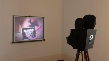 Contemporary art exhibition, Simon Fujiwara, AMTSALON Berlin at Kantstraße 79, Berlin, Germany