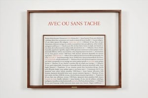 Avec ou sans tache by Sophie Calle contemporary artwork