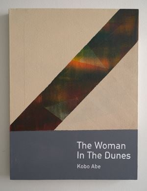 The Woman in the Dunes / Kobo Abe by Heman Chong contemporary artwork