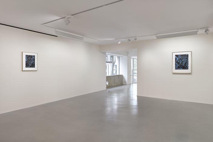 Exhibition view:Elizabeth Peyton, Sadie Coles HQ, Davies Street, London (4 May–15 June 2019). Courtesy Sadie Coles HQ, London.