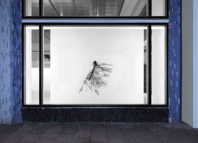 Exhibition view: Monika Sosnowska, Showcase,Capitain Petzel, Berlin (17 April–12 June 2021). Courtesy Capitain Petzel. Photo: Jens Ziehe.