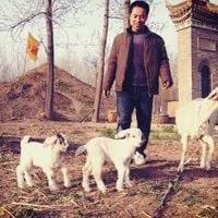 Xia Dynasty Taikangling Mausoleum by Kan Xuan contemporary artwork photography