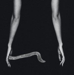Keepsake (print only) by Pat Brassington contemporary artwork