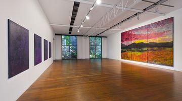 Contemporary art exhibition, Daniel Boyd, AND THE HORIZON SWALLOWED THE TORTOISE at Roslyn Oxley9 Gallery, Sydney, Australia