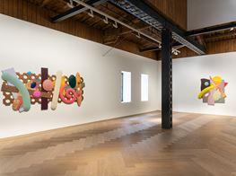 "Josh Sperling<br><em>Paradise</em><br><span class=""oc-gallery"">Perrotin</span>"