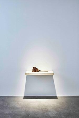 Towards the Diagnostic Gaze, (Paris) by William Forsythe contemporary artwork