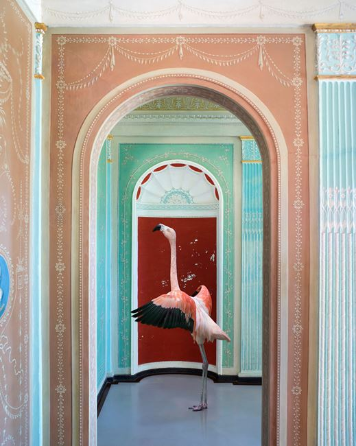 In the Mood for Love, Palazzina Cinese by Karen Knorr contemporary artwork