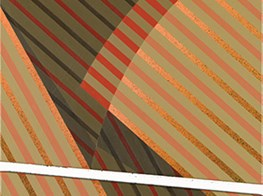 Tomma Abts CHICAGO