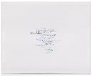 Wits' End Mash (get under my skin) by Roni Horn contemporary artwork