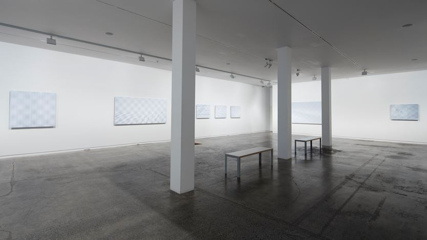 Elizabeth Thomson, Subliminal, 2016, Exhibition view, Two Rooms, Auckland. Courtesy Two Rooms, Auckland.