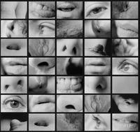 Portrait Partials by Carolee Schneemann contemporary artwork photography