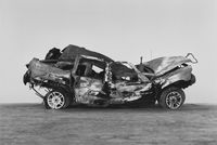 Crashed, burned and rolled (2) by Richard Learoyd contemporary artwork photography