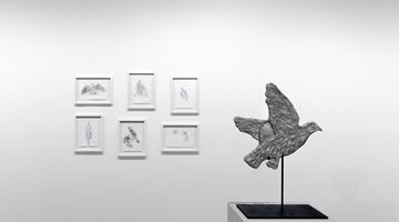 Contemporary art exhibition, Kiki Smith, Solo Exhibition at Krakow Witkin Gallery, Boston