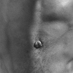 Belly Button by Robert Mapplethorpe contemporary artwork