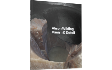 Alison Wilding: Vanish & Detail