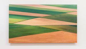 Fieldwork by Elizabeth Thomson contemporary artwork