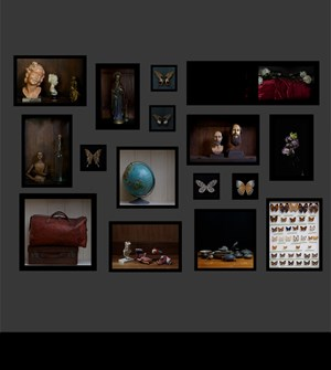 The Room of Curiosities by Krisada Suvichakonpong contemporary artwork
