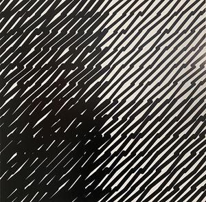 Segments inclinés A by Véra Molnar contemporary artwork