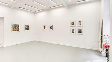 Andréhn-Schiptjenko contemporary art gallery in Paris, France