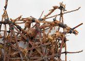 Mudman Structure (large) by Kim Jones contemporary artwork 5