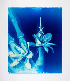 Blood Blue No.17 by Hu Weiyi contemporary artwork