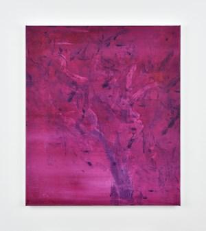 Sans titre (Baonzaï) by Jean-Baptiste Bernadet contemporary artwork