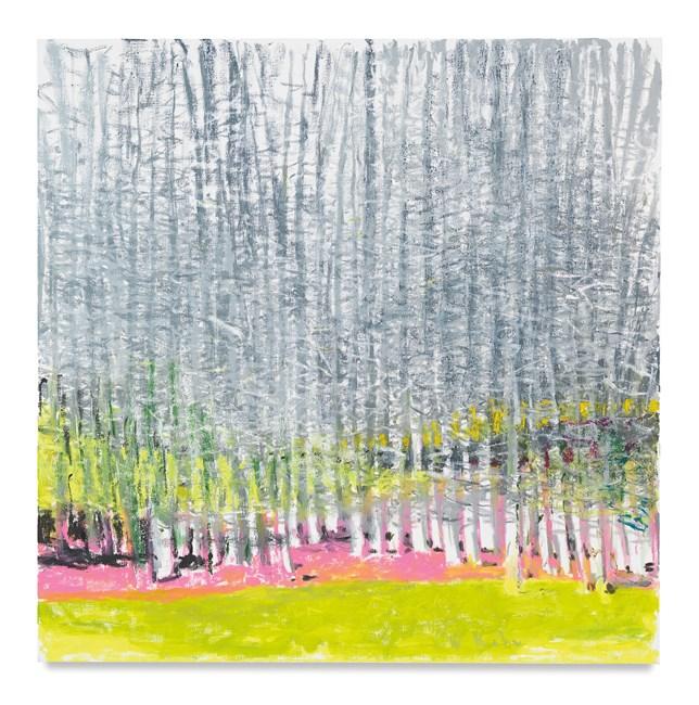 Dense Plantation of Silver Birches II by Wolf Kahn contemporary artwork