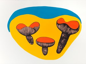 Voyages of discovery (Fruiting bodies) by Patricia Piccinini contemporary artwork works on paper