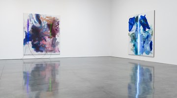 Contemporary art exhibition, Mary Weatherford, I've Seen Gray Whales Go By at Gagosian, New York