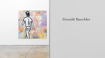 Contemporary art exhibition, Donald Baechler, Solo Exhibition at Cheim & Read, New York