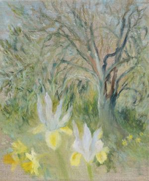 Olive Tree Dream by Star Gossage contemporary artwork