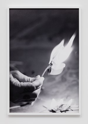 Match fire #5 (The Modernist) by Catherine Opie contemporary artwork