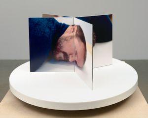 Film-Object (Artist's Head) by Lucas Blalock contemporary artwork