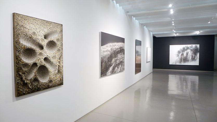 Exhibition view: Group Exhibition, Winter Group Show, Sundaram Tagore Gallery, Chelsea, New York (9 January–8 February 2020). Courtesy Sundaram Tagore Gallery.