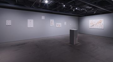 Contemporary art exhibition, Oliver Beer, Ghost Notes (Part 1) at The Club, Tokyo
